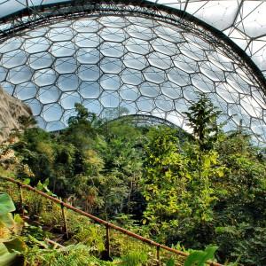 Un'immagine dell'Eden Project