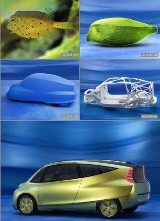 boxfish-bionic-car