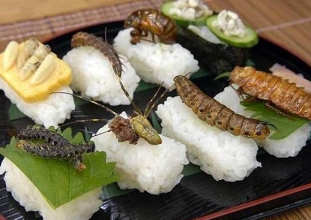 insetti-da-mangiare-638280.610x431