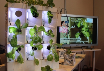 Hydroponic House System