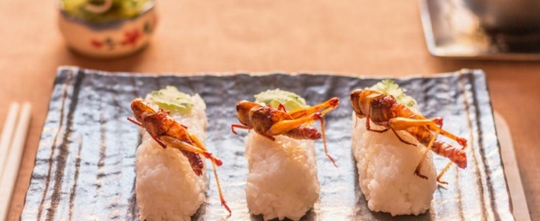 Anno nuovo, cibo nuovo: insetti a tavola degli italiani a partire dal 2018