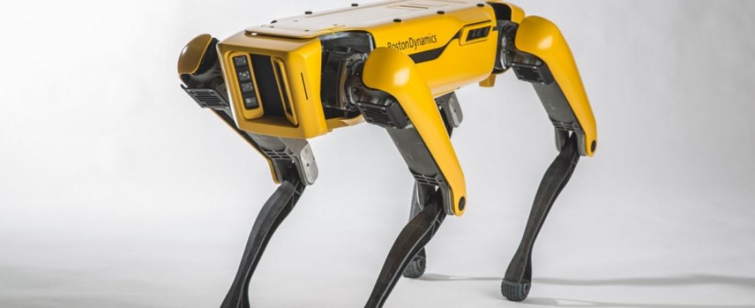 Spot: arriva il cane robot da pascolo